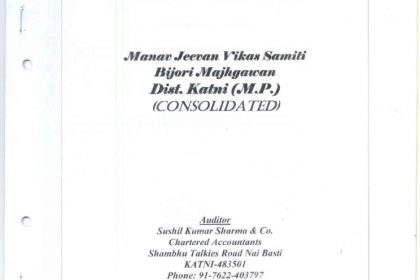 thumbnail of Audit_Reports_2010_-_2011