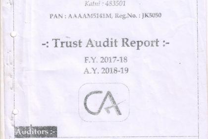 thumbnail of audit-report-2017-2018